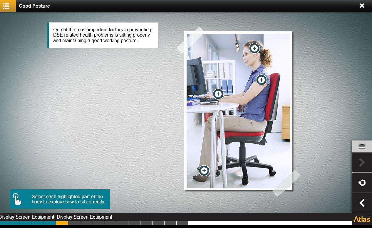 Display Screen Equipment DSE Training 4