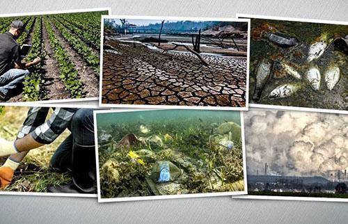 Environmental Awareness Training