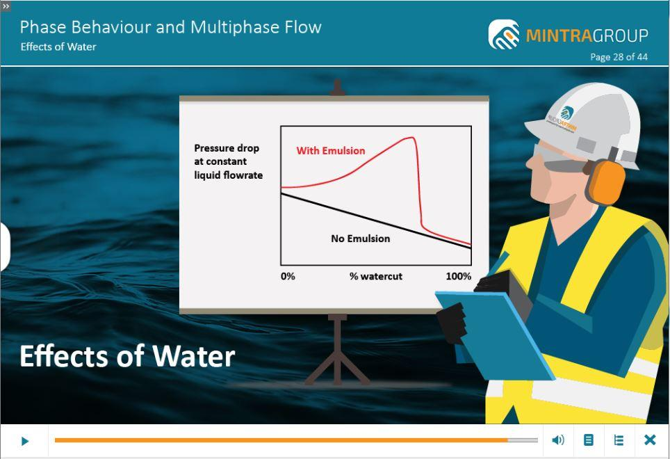 Phase Behaviour and Multiphase Flow Training 5