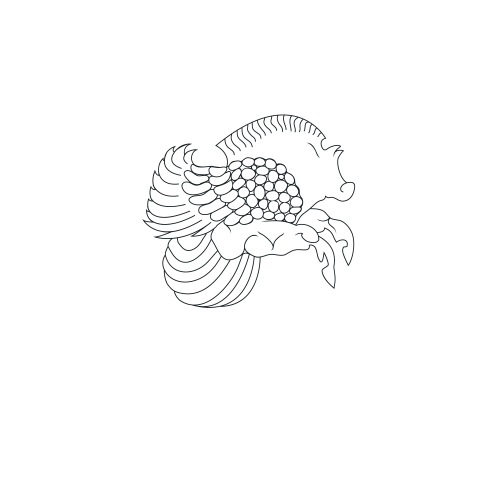 Chrysaor light