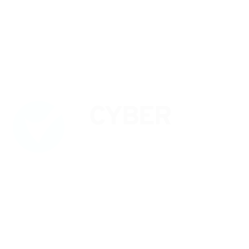 Cyber Essential Light