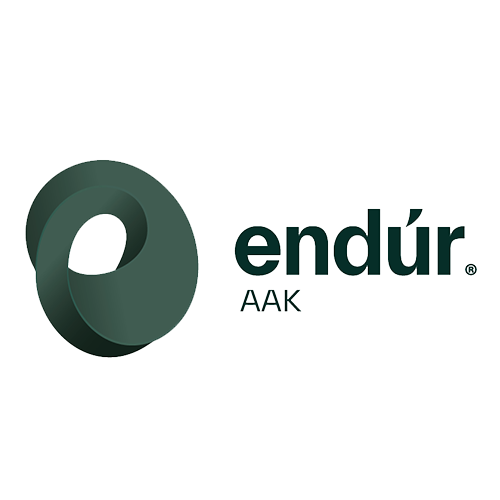 Endur logo dark